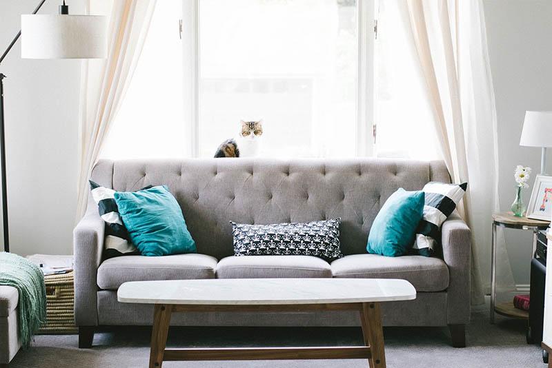 5 actividades para hacer en casa (parte 1)